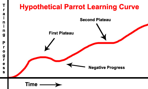 parrot learning curve.jpg